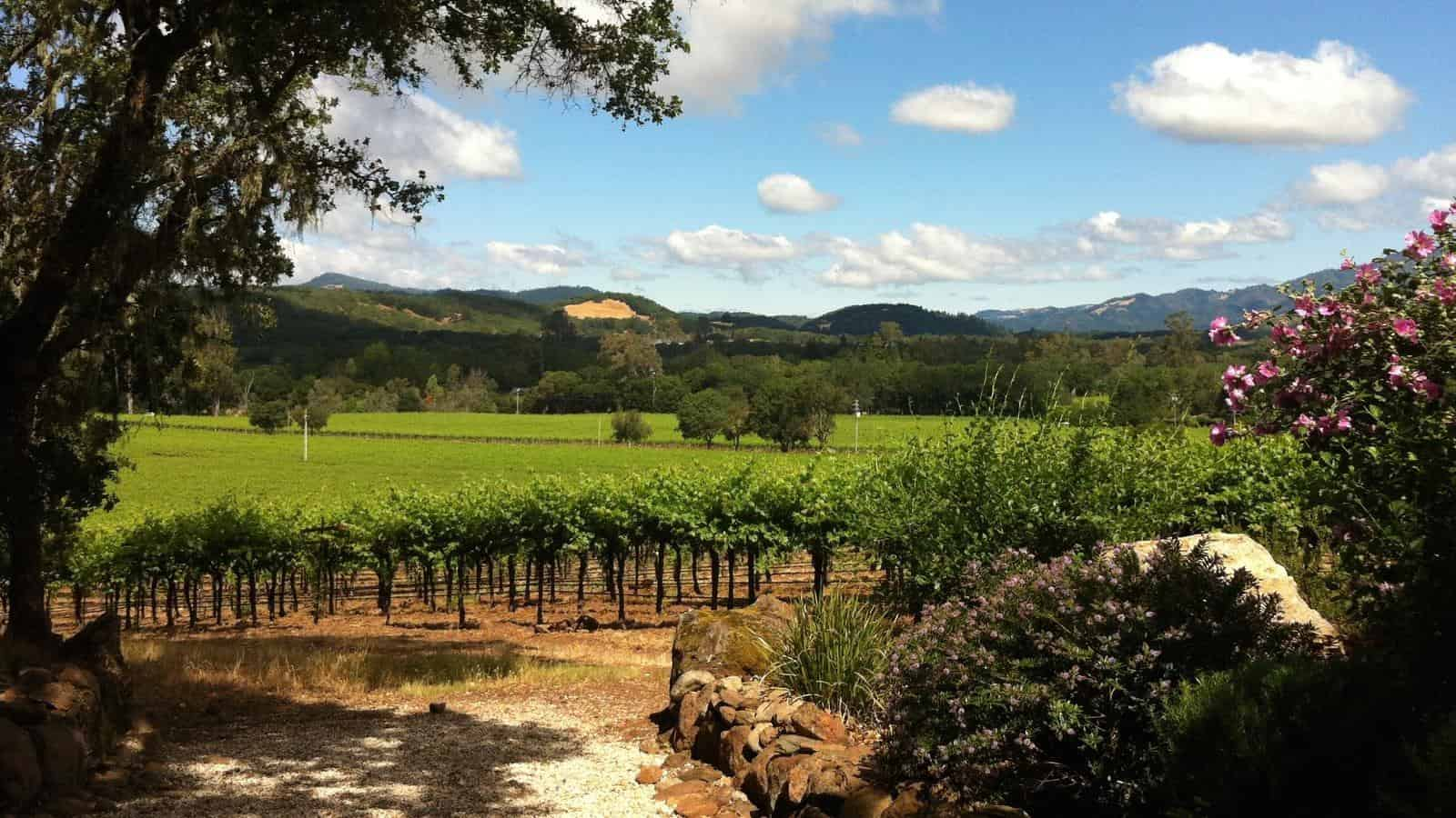 San Francisco Tour to Sonoma Valley